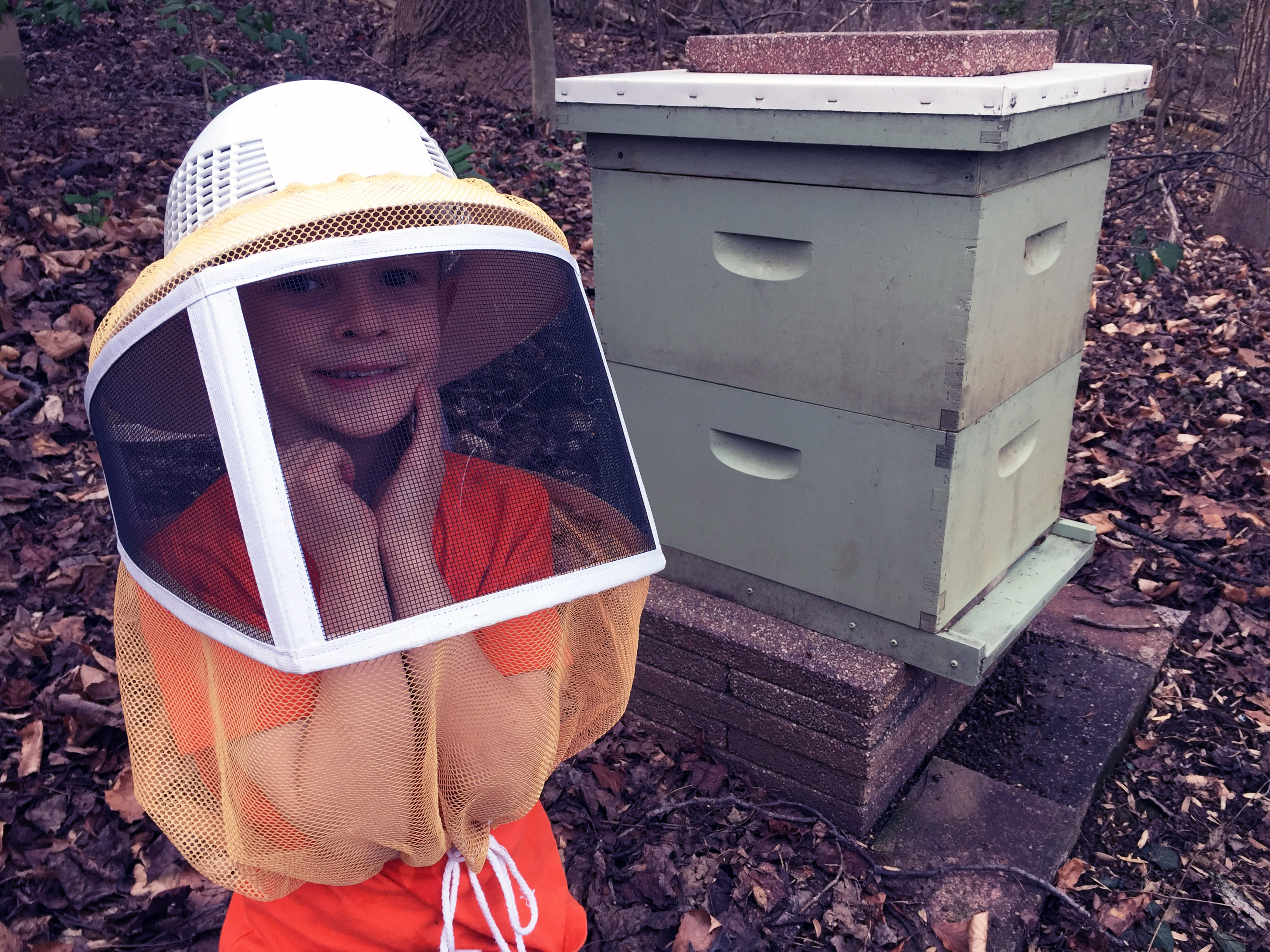 A Young Beekeeper